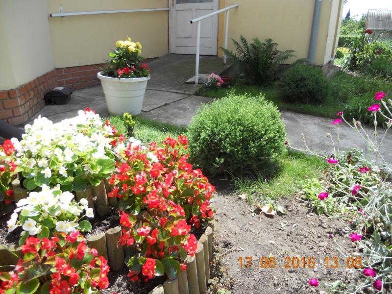 19 kertünk